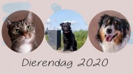 dierendag 2020