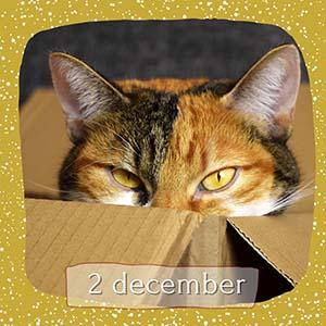 advent 2 december