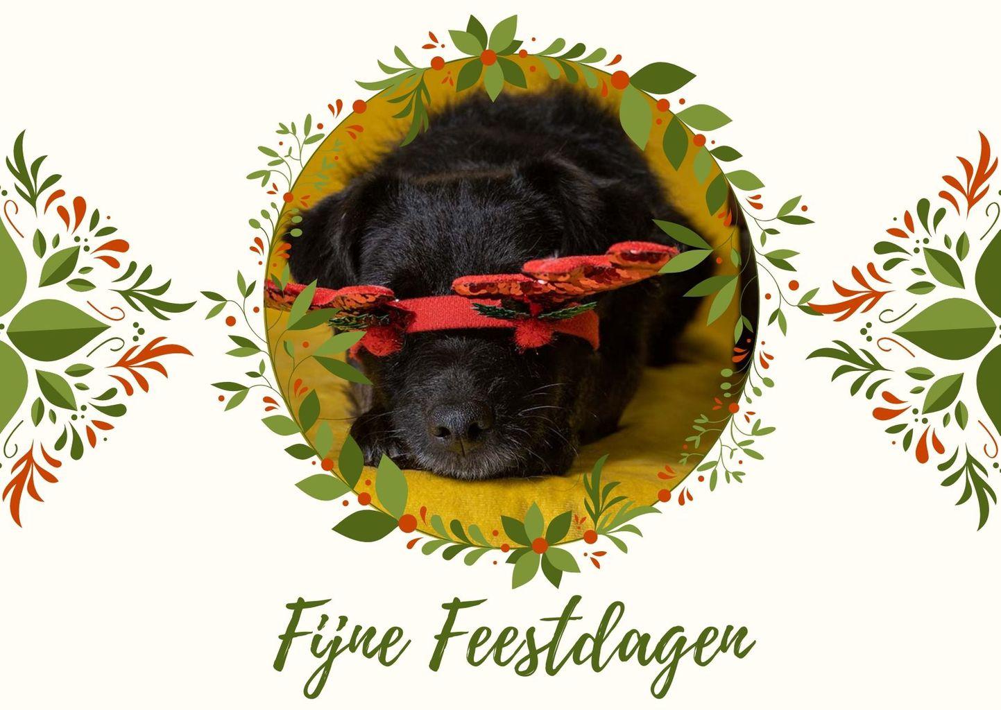 fijne kerstdagen kaart met hond en diadeem van rendier voor zijn ogen.