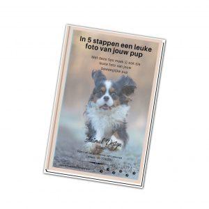 E-book-cover puppenfoto